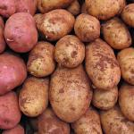 Boiled Potatoes II