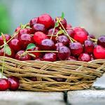 Cherry Pudding II
