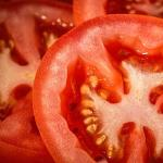 Jellied Tomato Salad