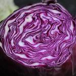Red Cabbage, Pickled